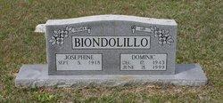 Dominic Ronals Biondolillo, Sr