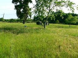 Leverkuhn Family Cemetery