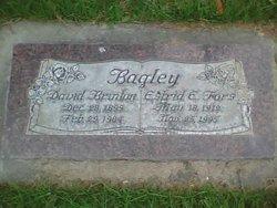 David Brinton Bagley