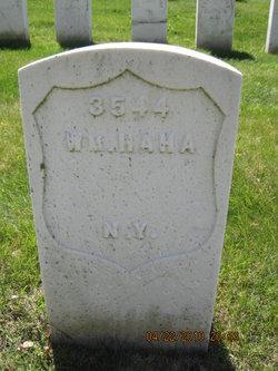 William Haha