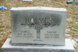 Sarah S <I>White</I> Holmes