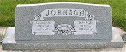 Terry Allen Johnson