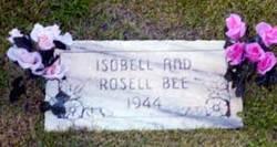 Isobell Bee