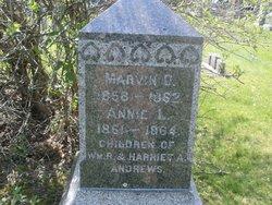 Marvin C Andrews