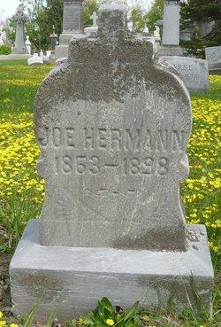 Joe Herrmann