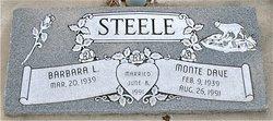 Monte Dave Steele