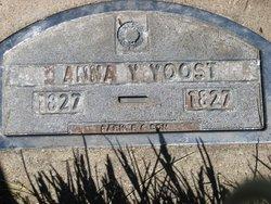 Anna J Yoost