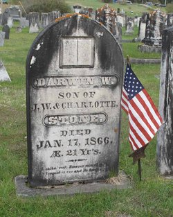 Darwin W Stone