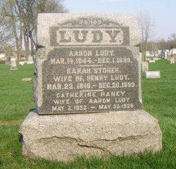 Aaron Ludy