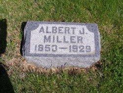 Albert Julian Miller