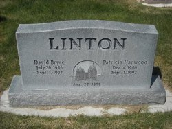 Dr David Bryce Linton
