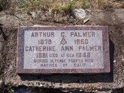 Catherine Ann <I>Pizzotti</I> Palmer