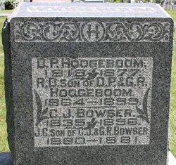 D.P. Hoogeboom