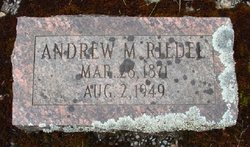 Andrew M Riedel