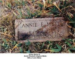 Annie Elizabeth <I>Ogden</I> Metts