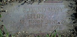 Pinie Mary <I>Rumley</I> Elliff