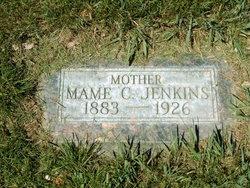 "Mary Ann ""Mame"" <I>Cook</I> Jenkins"