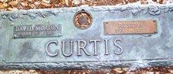 David M Curtis
