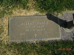 Albert Busch