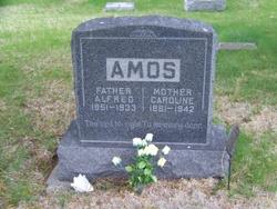 Caroline N. <I>Carnall</I> Amos