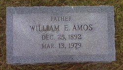 William E Amos