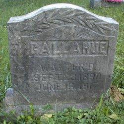 Walter D. Gallahue