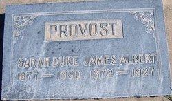 Sarah Figenia <I>Duke</I> Provost