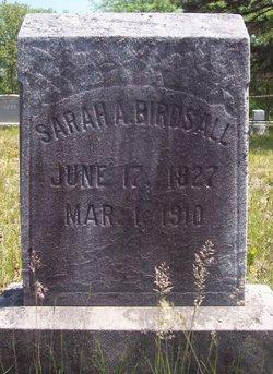 Sarah Ann <I>Miller</I> Birdsall