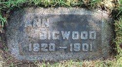 Ann <I>Alder</I> Bigwood