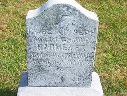 Carl Joseph Harmeyer