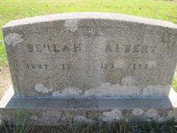 Albert Newton Allen