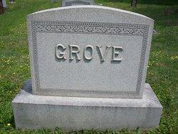 Frances <I>Brumback</I> Grove