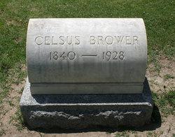 Celsus Brower