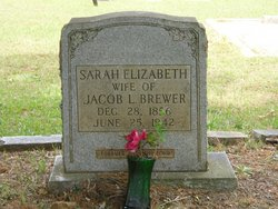 Sarah Elizabeth <I>Scarborough</I> Brewer