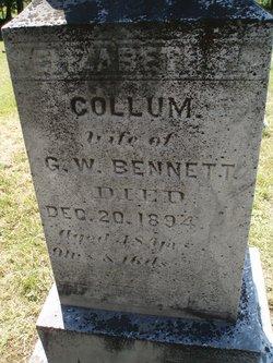 Elizabeth <I>Collum</I> Bennett