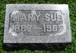 Mary Sue Farmer