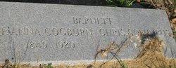Christopher Columbus Barnett