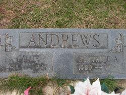 Callie Andrews
