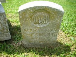 Mary Ann <I>Chesworth</I> Summerfield