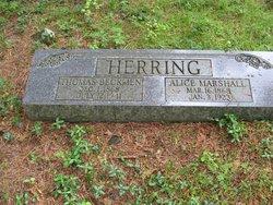 Alice Florence <I>Marshall</I> Herring