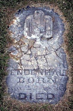 William Amasa Mendenhall
