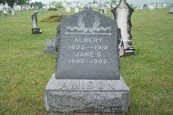 Albert Amidon