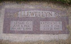Mary Katherine <I>Harrison</I> Llewellyn