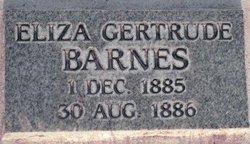Eliza G Barnes