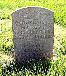 Cornelius Johannes Mcreavy
