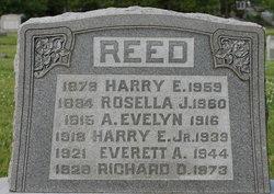 Everett Adams Reed