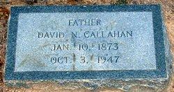 David Newton Callahan