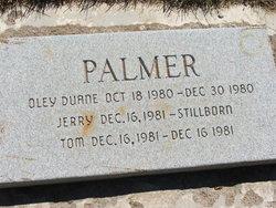 Oley Duane Montayne Palmer