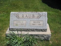 Wilson Raub