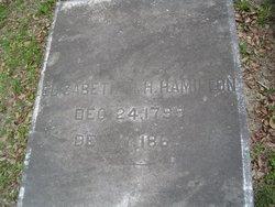 Elisabeth Mathews <I>Heyward</I> Hamilton